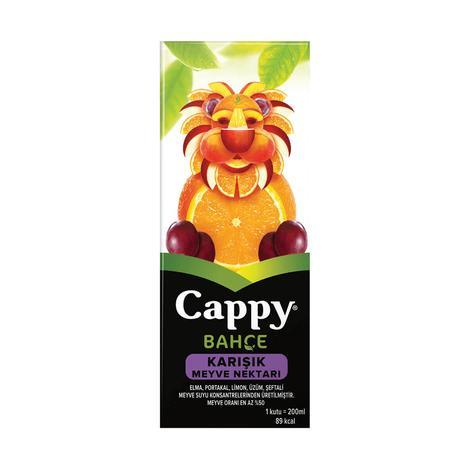 Cappy Meyve Nektarı Karışık 200 Ml